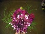 Throw Away Bouquet 2011